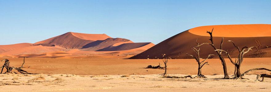 Découvrir le désert de Namibie