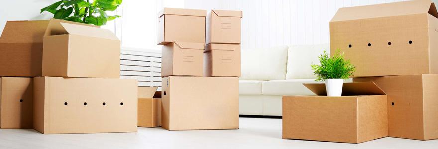 Experts du déménagement